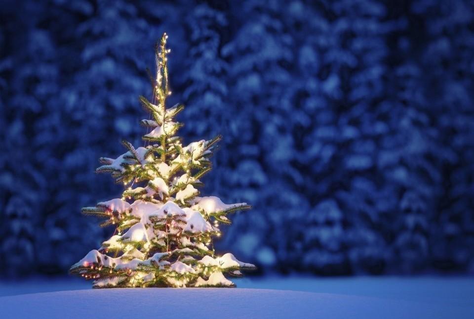Magiczne Święta Bożego Narodzenia